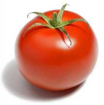 Beneficios y propiedades del tomate Plantas Medicinales