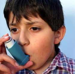 Asma bronquial: Fantasmas que reaparecen con la primavera Pediatría