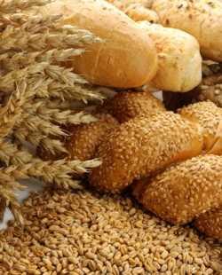 Salvado de avena Nutrición y Dietética