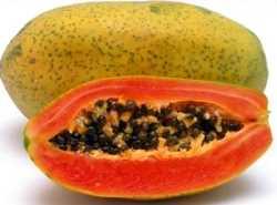 La Papaya es ideal para adelgazar Nutrición y Dietética